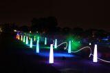 neon night runs
