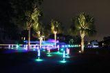 neon night run lighting