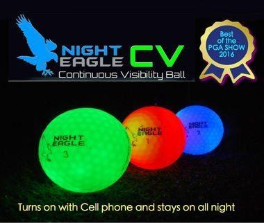 Night_eagle_CV 1