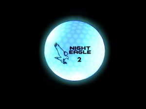 night-eagle-blue