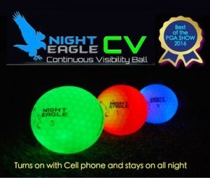 Night_eagle_CV 1
